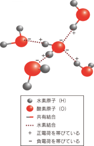 水素結合の写真