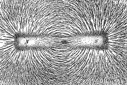 磁力線 磁場と力